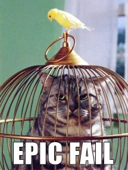 catt-epic-fail